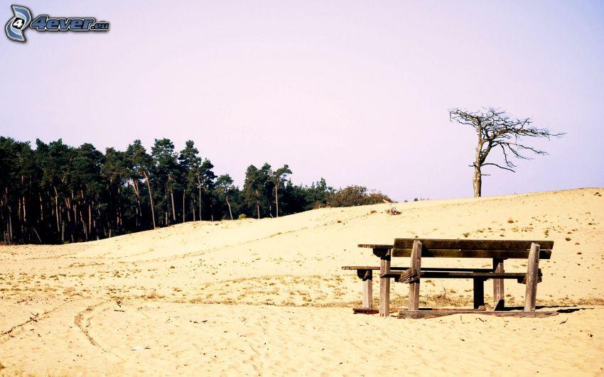 Bänke, Wüste, trockener Baum, Wald