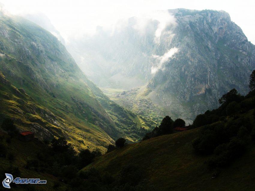 felsige Berge, Wiese
