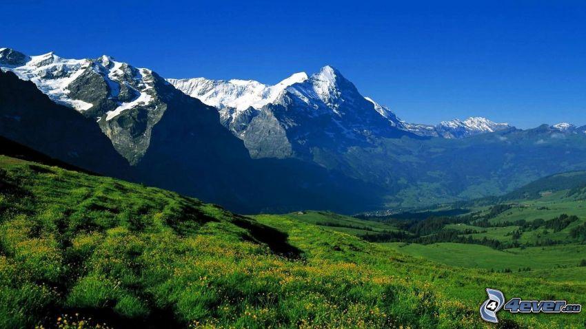 felsige Berge, Wiesen