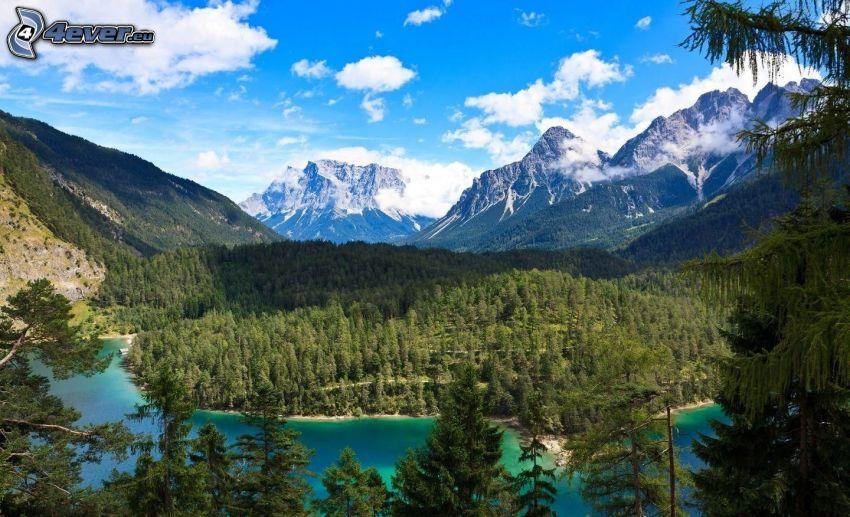 Fluss, Nadelbäume, felsige Berge