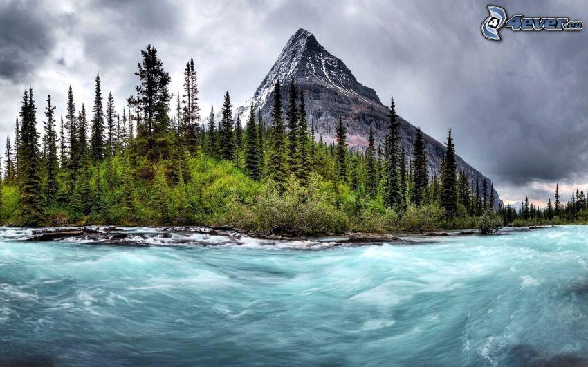 Fluss, Nadelbäume, felsiger Berg