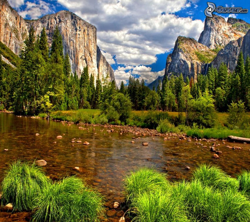 Fluss im Yosemite-Nationalpark, El Capitan, Bach, felsige Berge, Gras, Bäume, Wolken