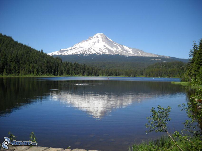 Mount Hood, schneebedeckten Berg, See, Spiegelung