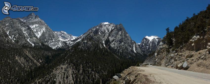 Mount Whitney, felsige Berge, Wald