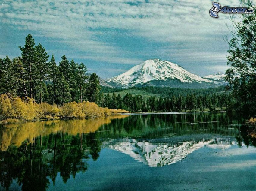 schneebedeckter Berg über dem See, Wasser, Himmel, Nadelbäume
