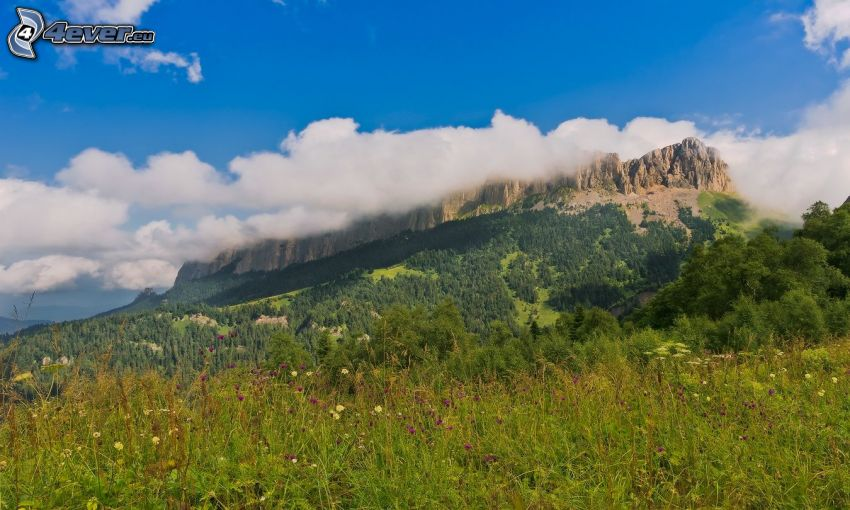 Wiese, felsiger Berg, Wolken