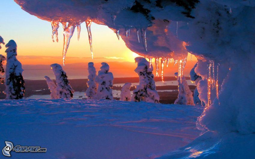 Eiszapfen, gefrorene Bäume, Schnee