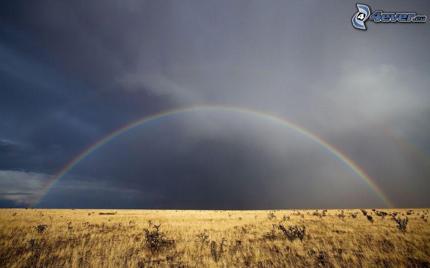 Feld, Regenbogen, dunkle Wolken
