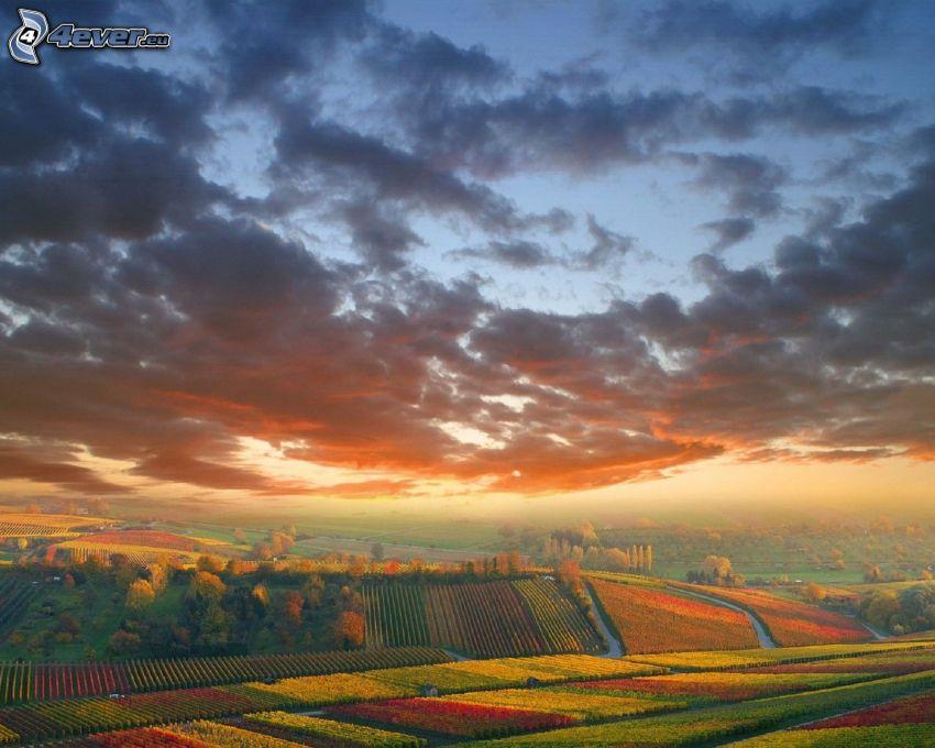 Felder, Wolken, Aussicht auf die Landschaft