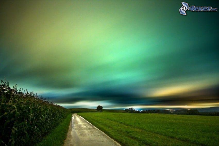 Feldweg, Felder, Polarlicht