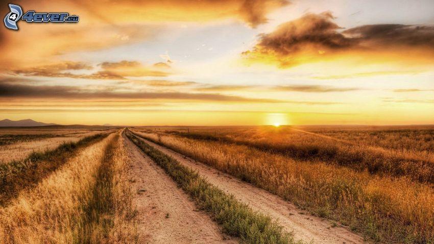 Feldweg, Sonnenuntergang hinter dem Feld