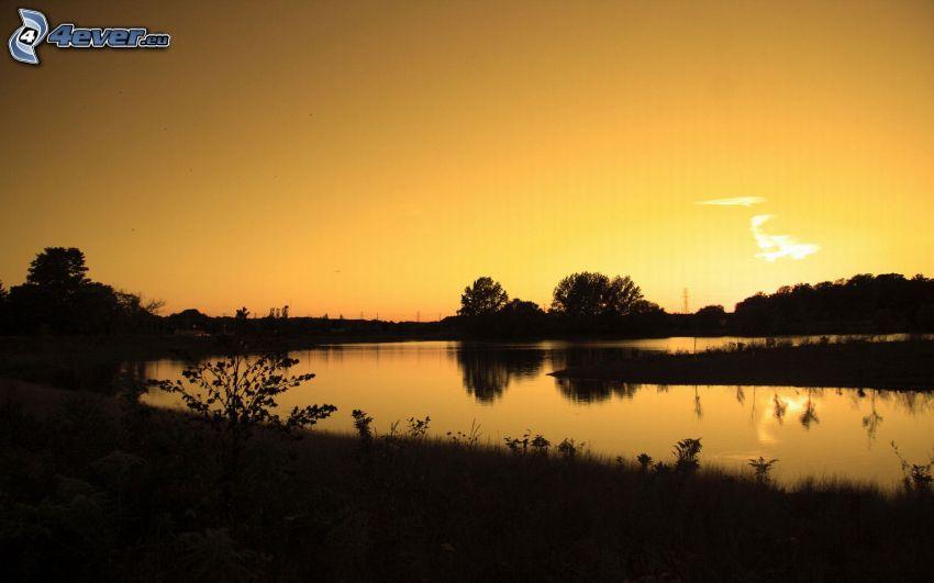 Fluss, Bäum Silhouetten, Himmel