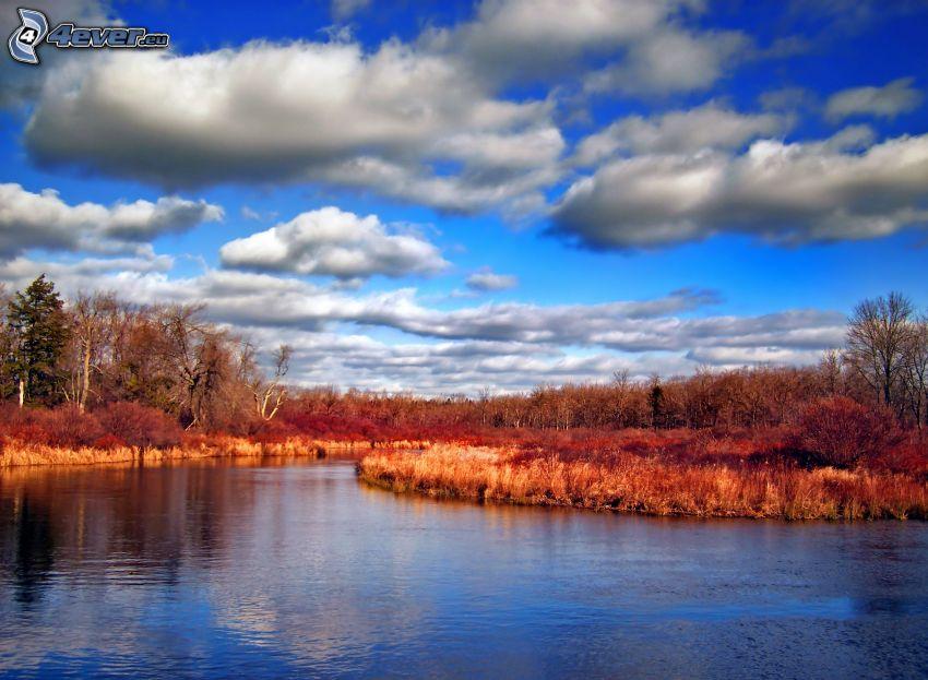 Fluss, Bäume, Himmel, Wolken