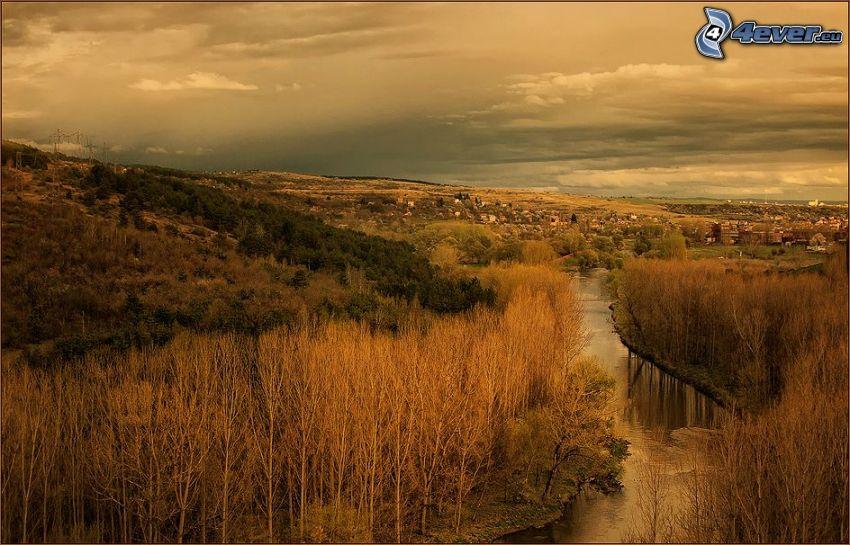 Fluss, Bäume