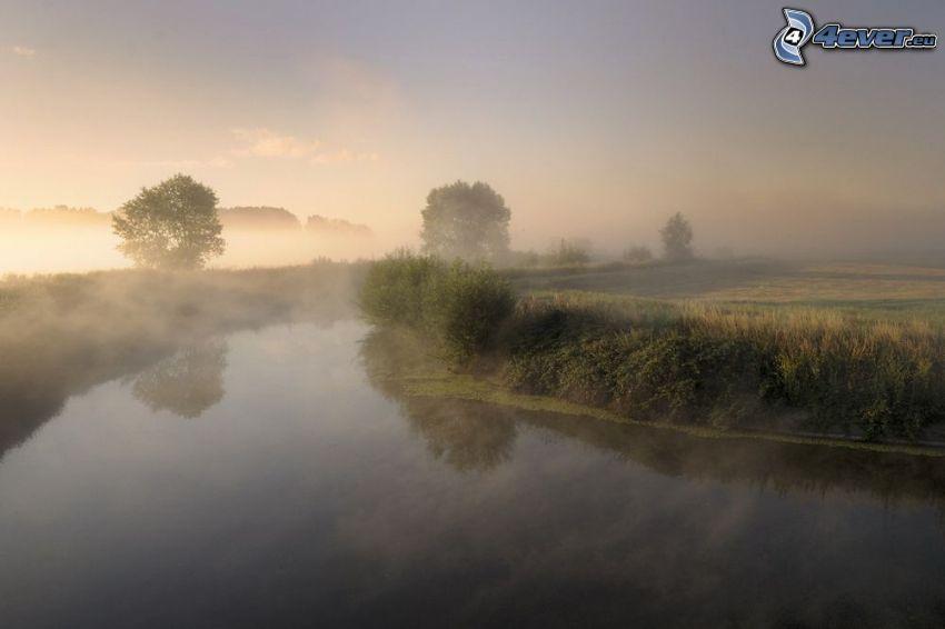 Fluss, Boden Nebel