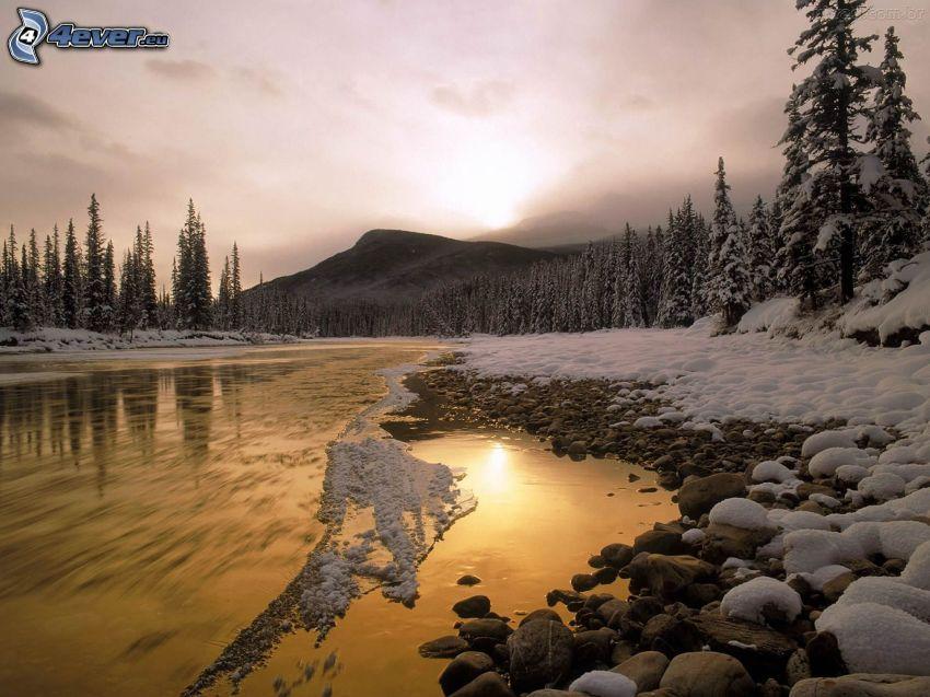 Fluss, verschneiter Nadelwald, schwache Sonne