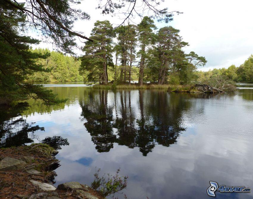 Fluss, Wald, Insel