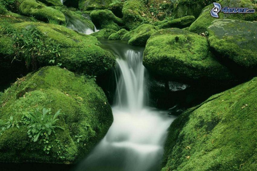 Fluss, Wasserfall, Felsen, Moos