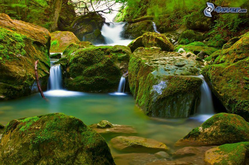 forstlicher Wasserfall, Felsen, Moos