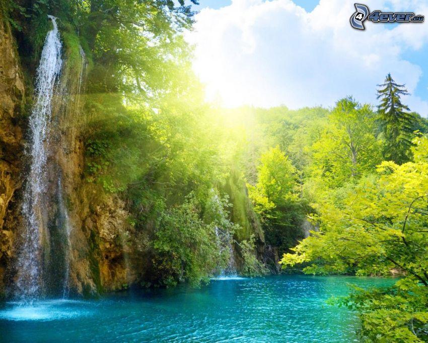 forstlicher Wasserfall, See im Wald, grünes Wasser, Sonnenstrahlen