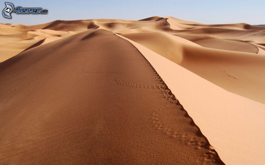 Fußspuren im Sand, Wüste, Sanddünen