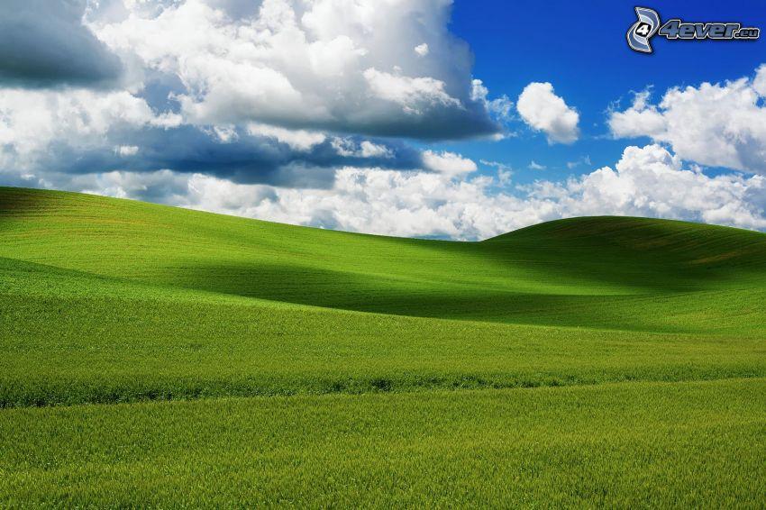 grüne Wiese, Wolken