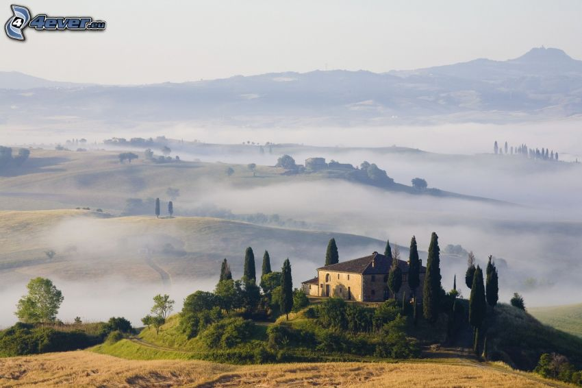Haus, Hügel, Boden Nebel