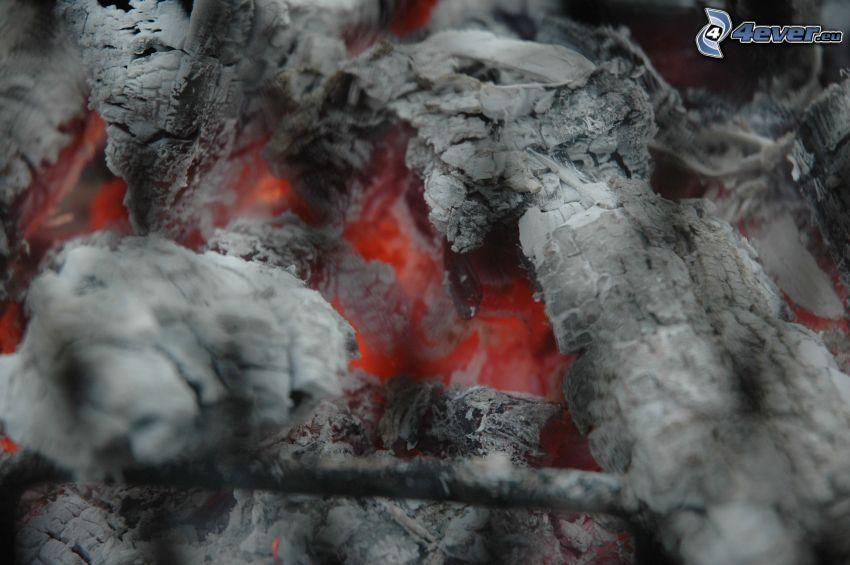 heiße Kohlen