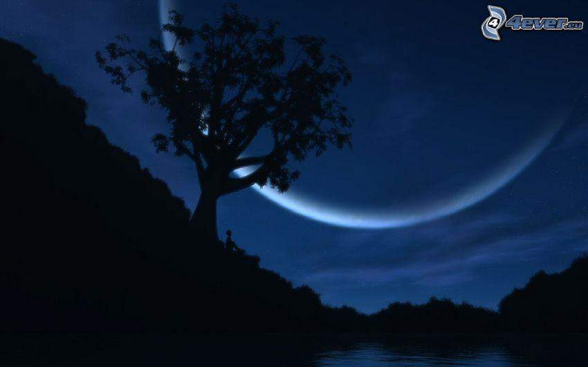 Nacht, Baum, Mond