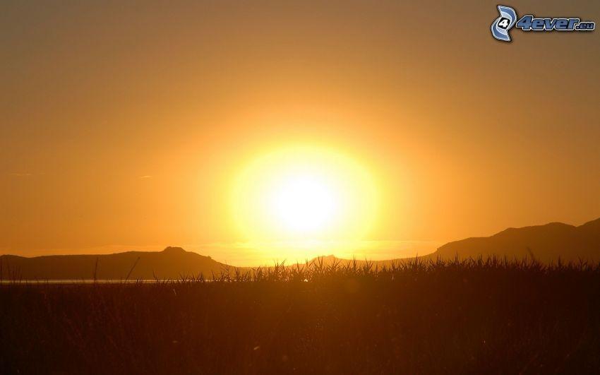 orange Sonnenuntergang