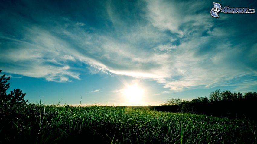 Sonnenaufgang, grüne Wiese, Gras, Wolken