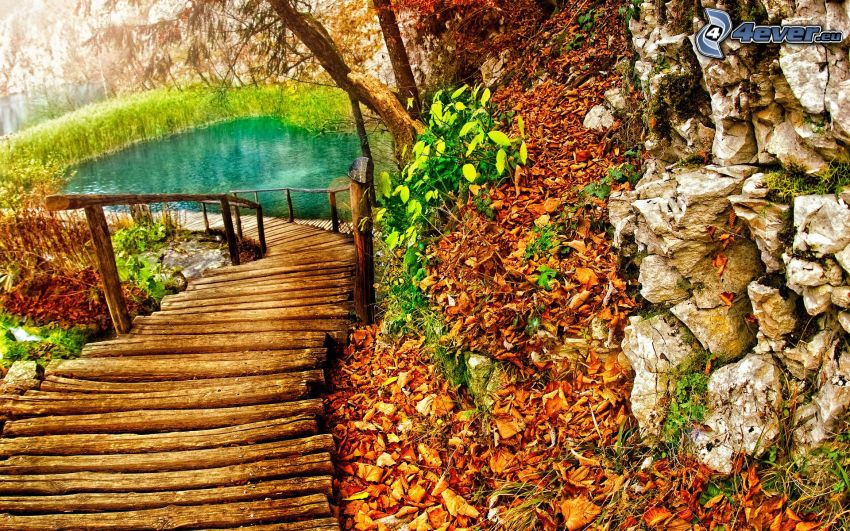 Holzbrücke im Wald, See, Felsen