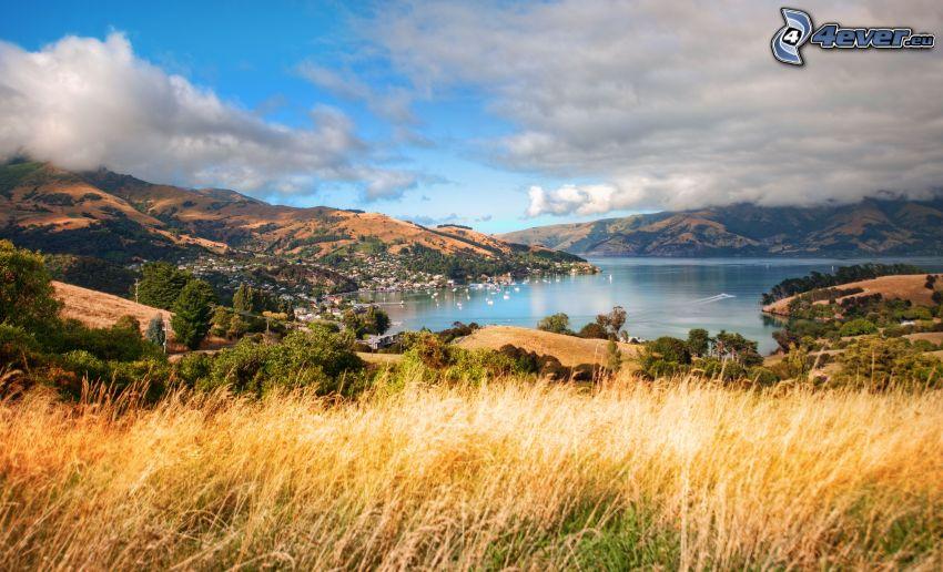 Bucht, See, Hügel, Bäume, trockenes Gras