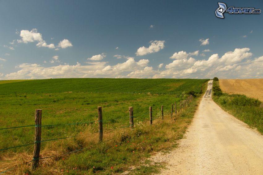 Feldweg, Zaun, Wiese