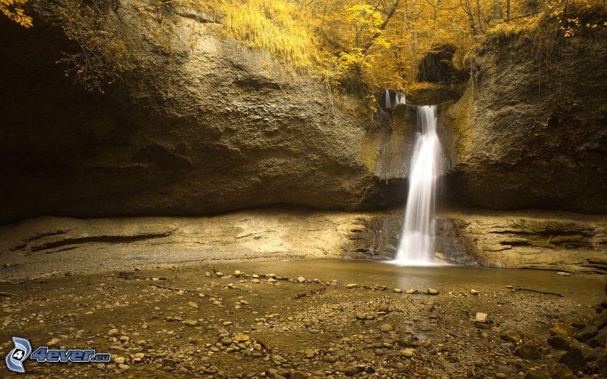 forstlicher Wasserfall, gelbe Bäume