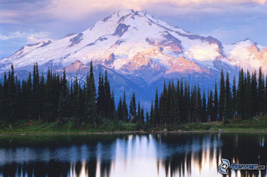 Glacier Peak, North-Cascades-Nationalpark, schneebedeckter Berg über dem See, Nadelbäume