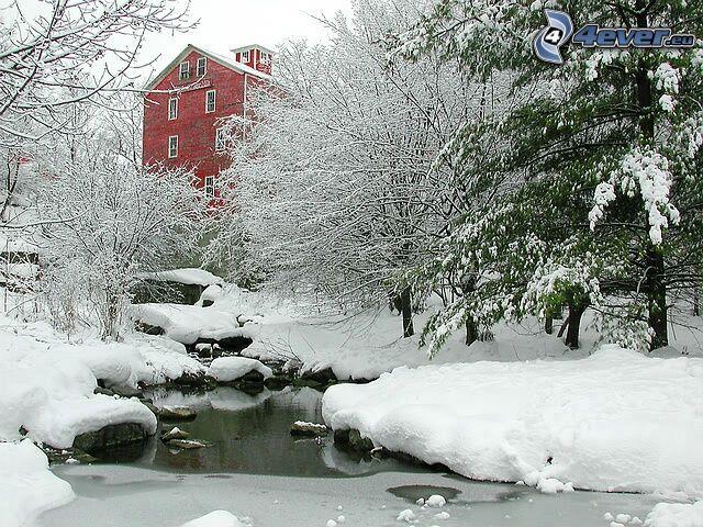 Glen Falls, Williamsville, Haus, verschneite Landschaft, Winter, Schnee, gefrorener Bach, verschneite Bäume