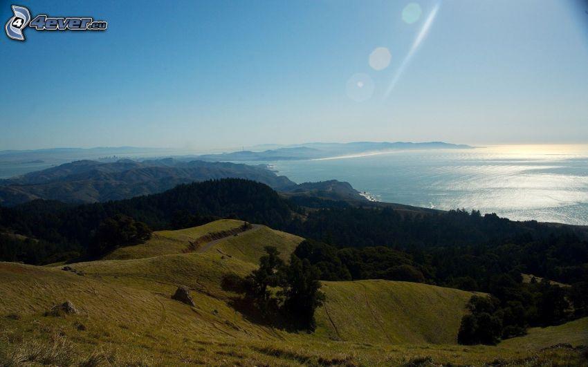 Hügel, Wiese, Bäume, Blick auf dem Meer
