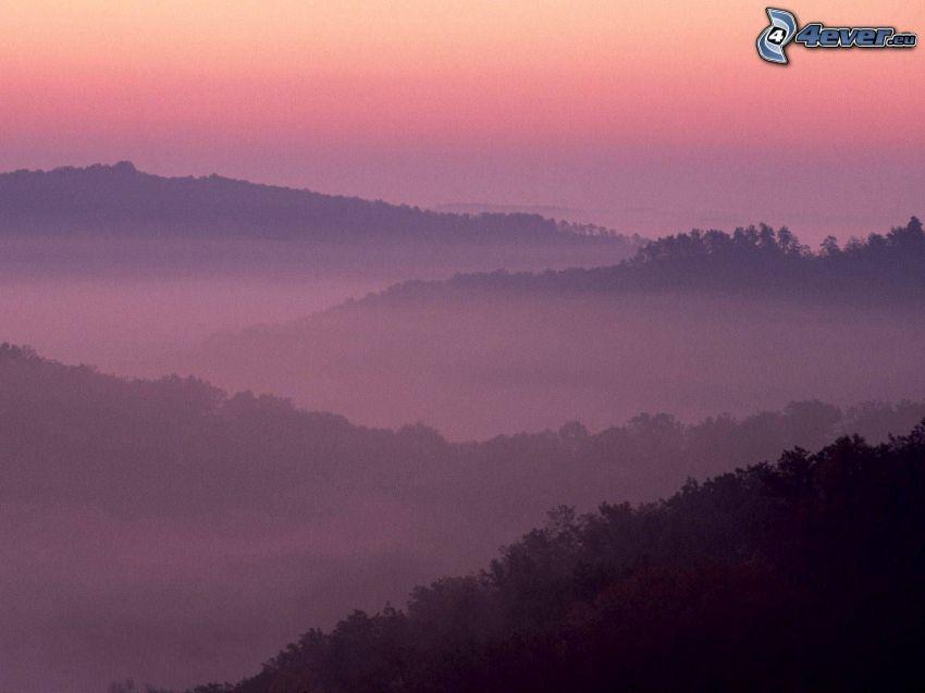 Inversionswetterlage, Wald, Hügel