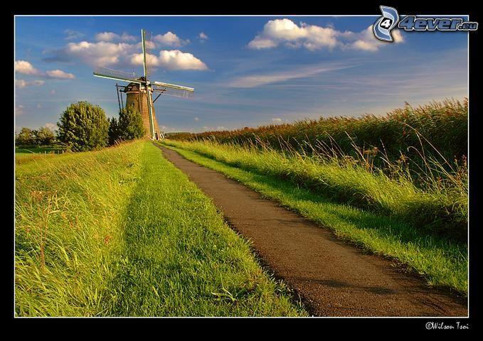 Mühle, Natur
