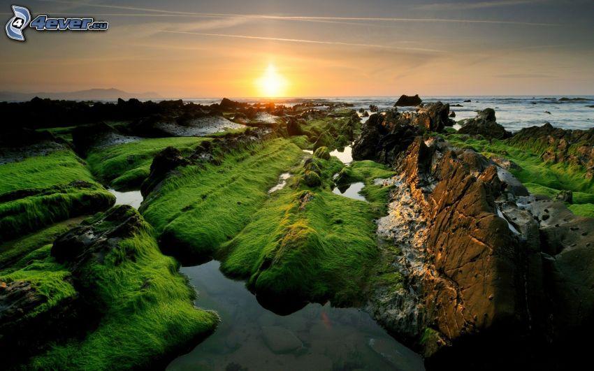 Sonnenuntergang auf dem Meer, felsige Küste, Moos