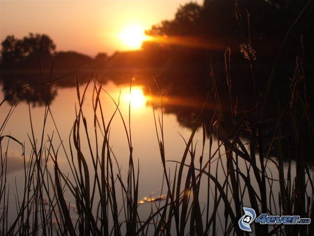 Sonnenuntergang über dem See, Strahl
