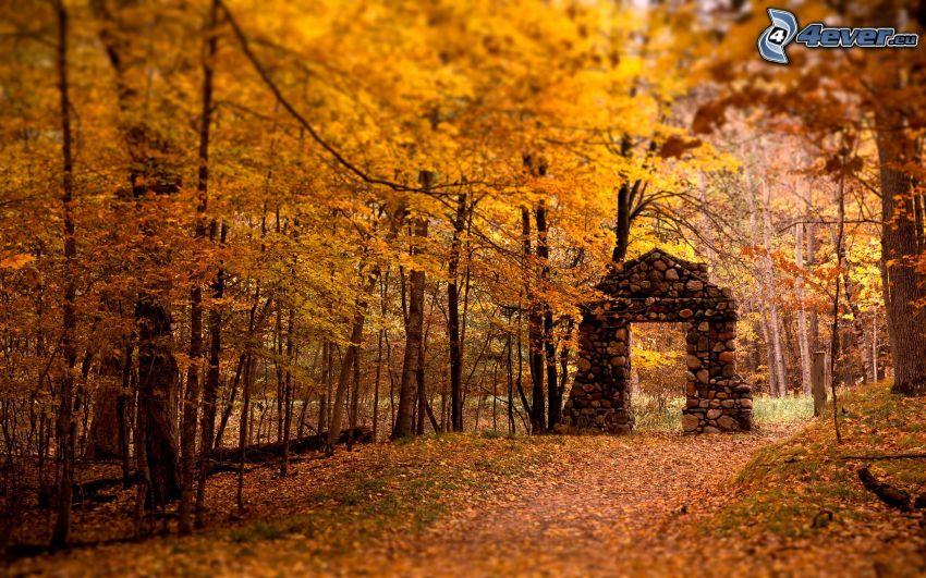 tor aus stein, gelber herbstlicher Wald, Blätter