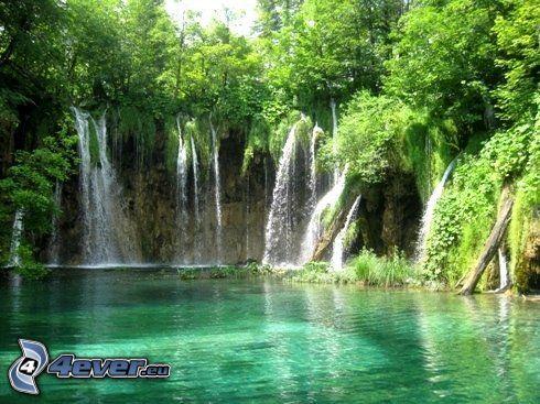 Wasserfall im Wald, grünes Wasser