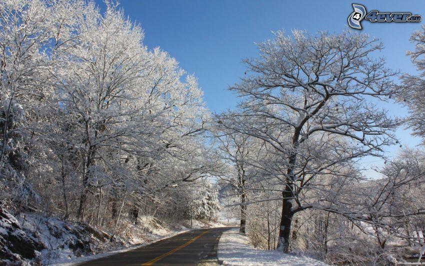 Weg im Winter, Schnee