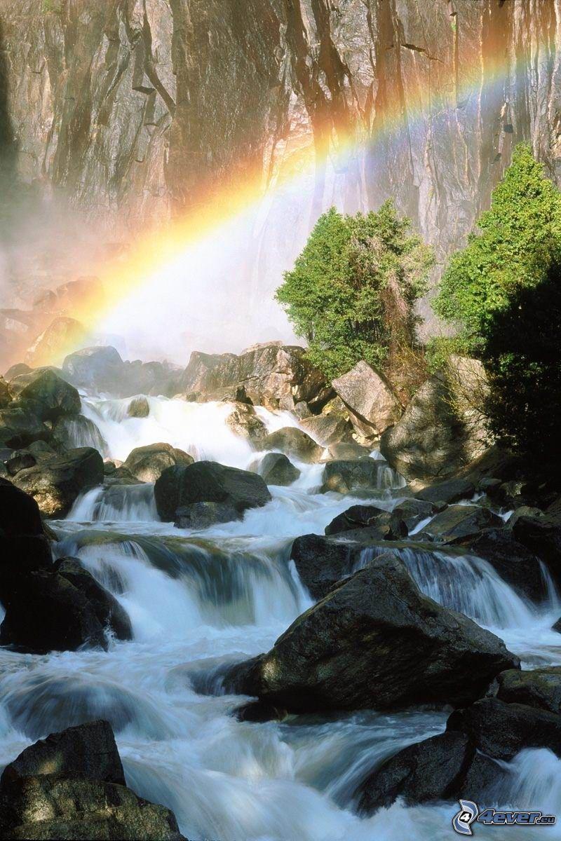 wilder Waldbach, Regenbogen, Bäume am Fluss, Wasser