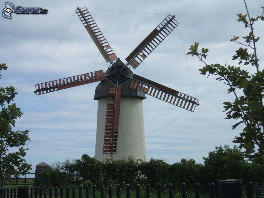 Windmühle, Himmel, Bäume
