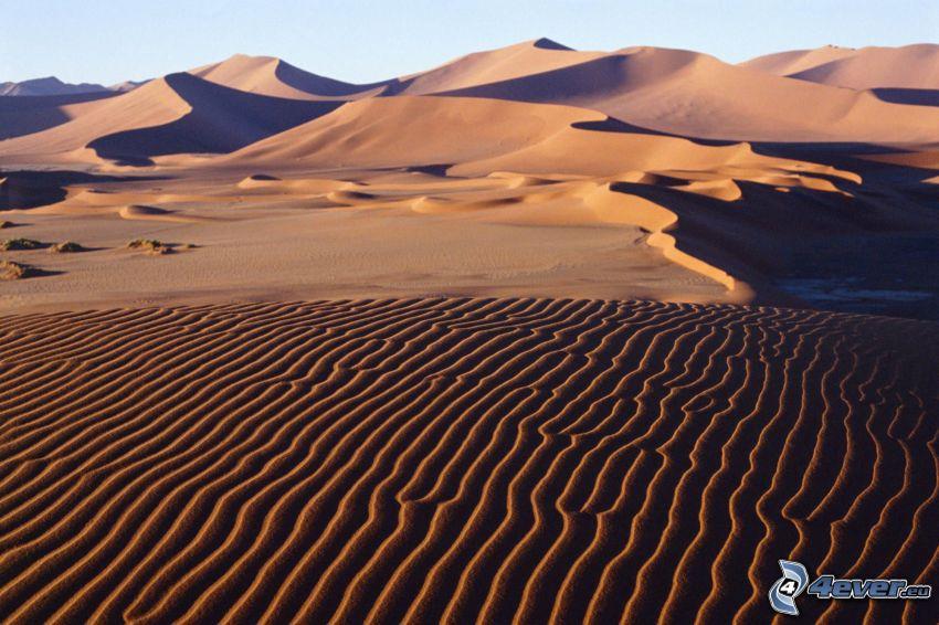 Wüste, Dünen