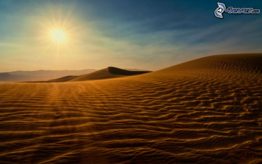 Wüste, Sanddünen, Sonnenuntergang