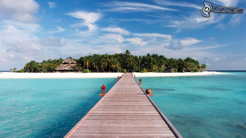 Holzsteg, tropische Insel, Palmen
